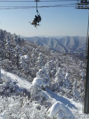 [스키에세이] 대설, 겨울이야기가 시작된다